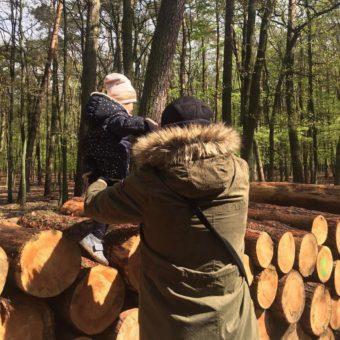 Strona Główna Woodies Safe Dreams drewniane łóżeczka